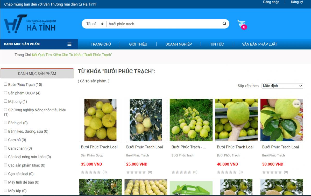 Đi tìm lời giải cho đặc sản bưởi Phúc Trạch: Để những mùa quả ngọt luôn được giá